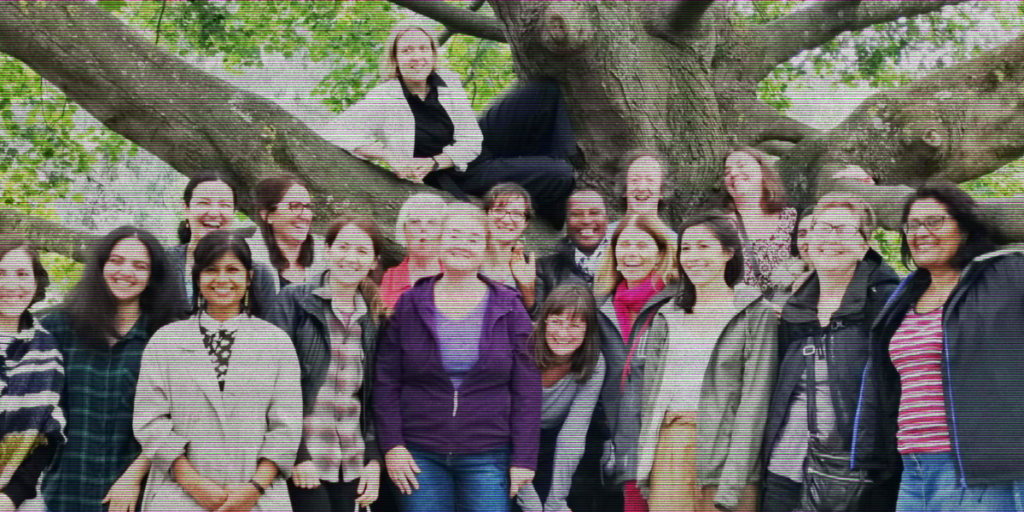 Meet the team from Wen (Women's Environmental Network)