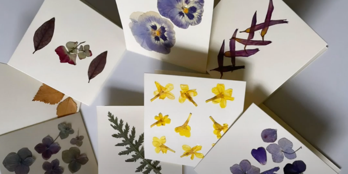 make your own pressed flower cards  wen