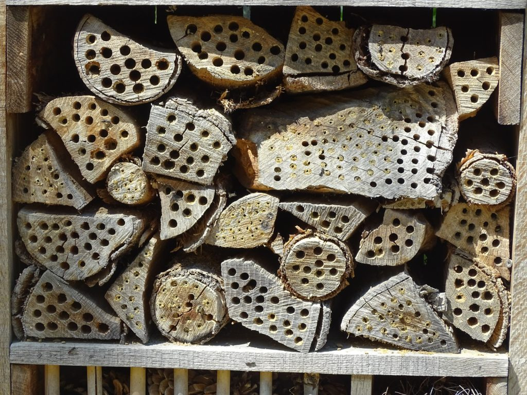 Bug/insect hotel